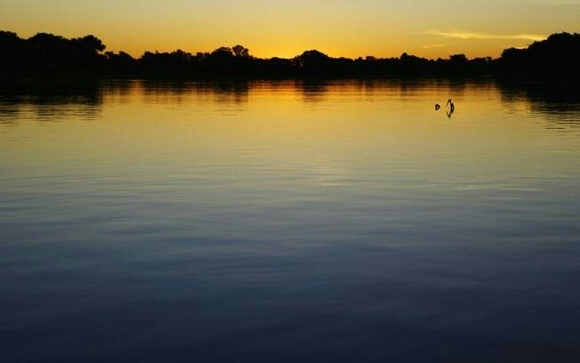 Pantanal Mato Grosso Do Sul Brasil Pantanal Matogrossense Destinos Nacionais Pantanal