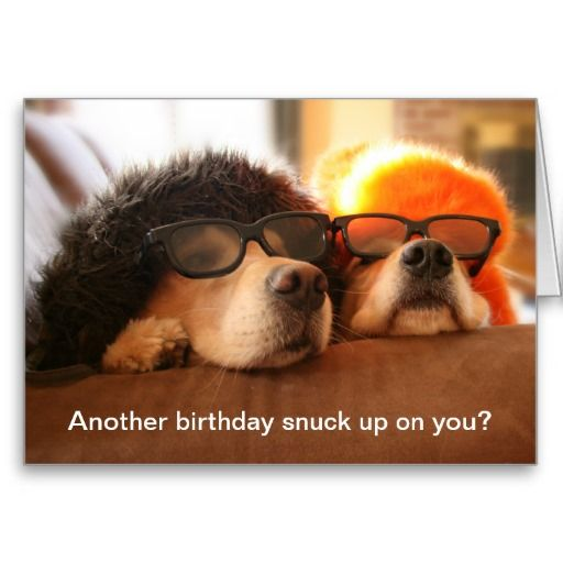 Golden Retriever Another Birthday Greeting Card. #funny