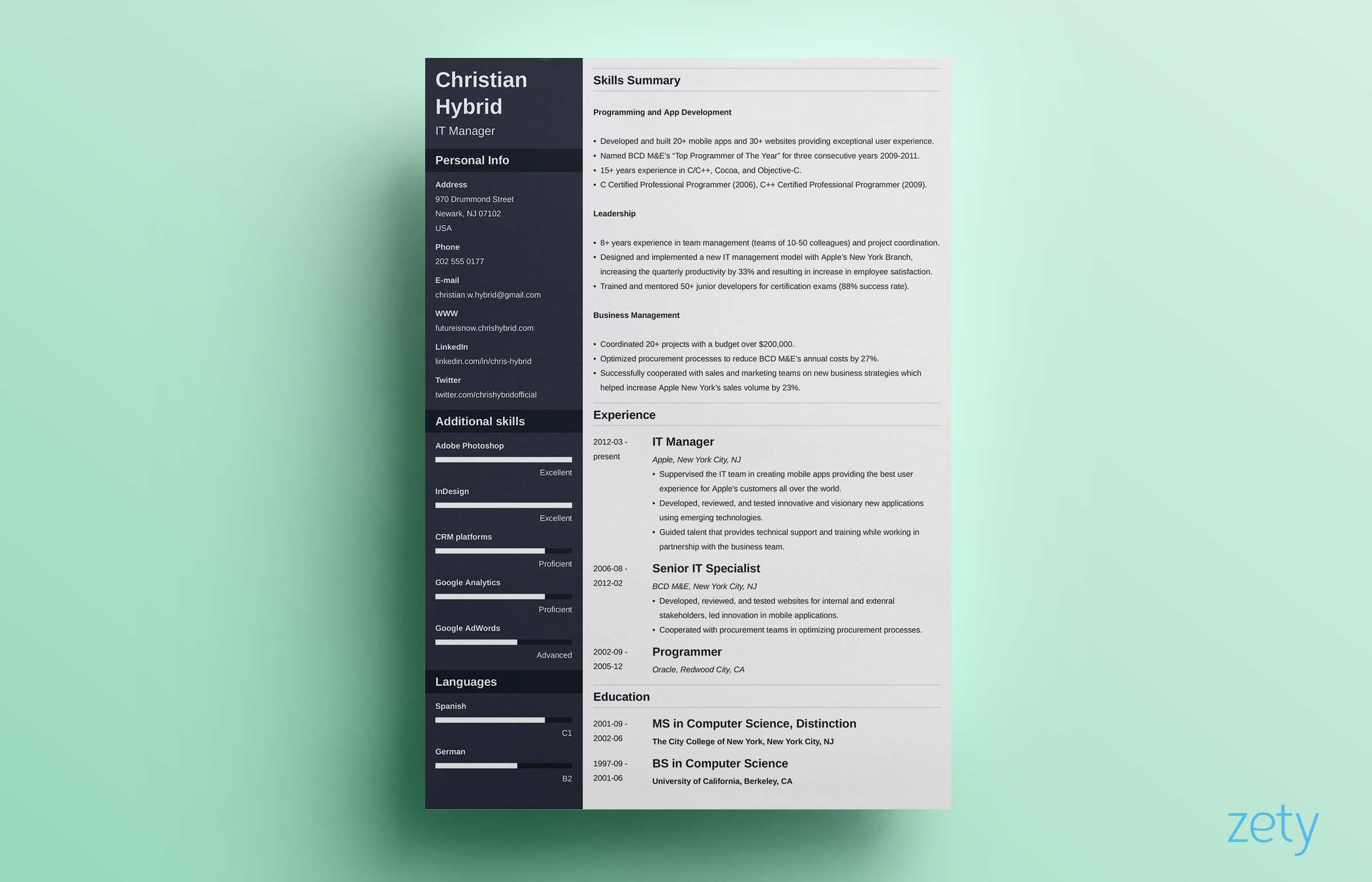 Combination Resume Template 5 Hybrid Examples Resume