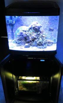 This is a tutorial on the coralife biocube 29 gallon upgrades and mods. Lighting & This is a tutorial on the coralife biocube 29 gallon upgrades and ...