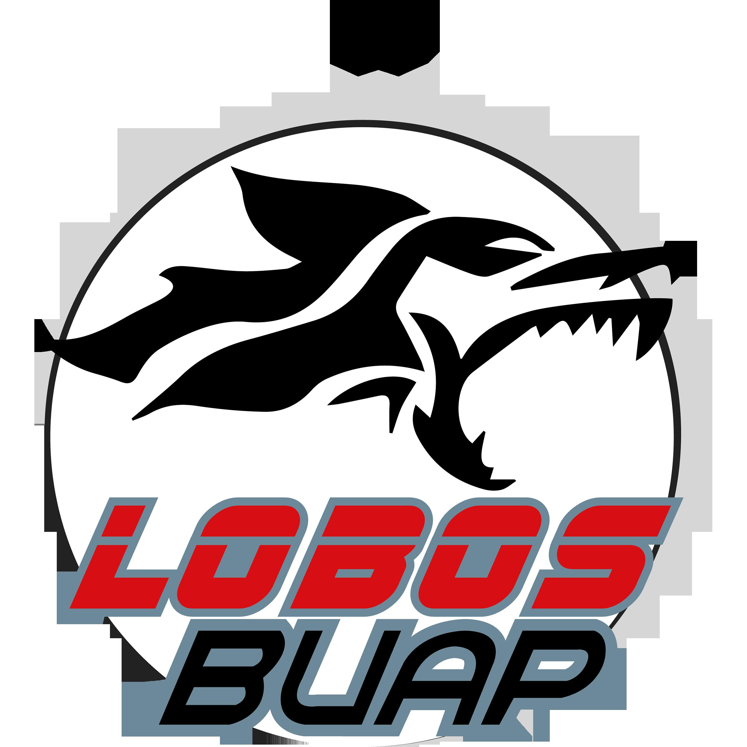 Club de Fútbol Lobos de la Benemérita Universidad Autónoma