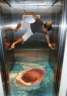 Elevator Shark Floor Graphic Pavement Art