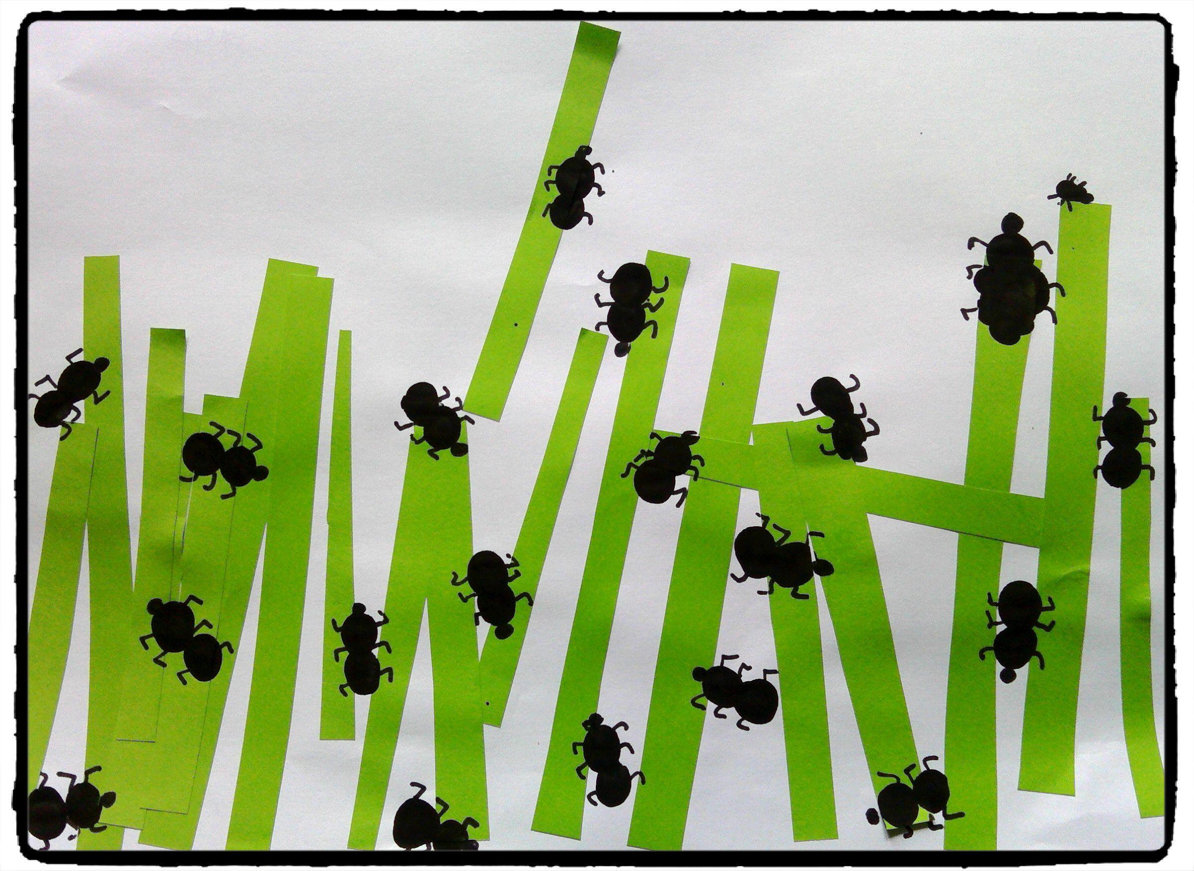 petites fourmis dans l 39 herbe ecole pinterest fourmis empreinte et bricolage enfant. Black Bedroom Furniture Sets. Home Design Ideas