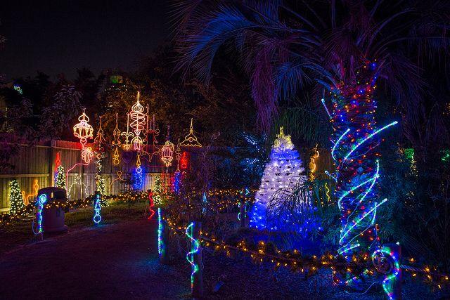 Houston Holiday Happiness Christmas Light Displays Christmas Travel Zoo Lights