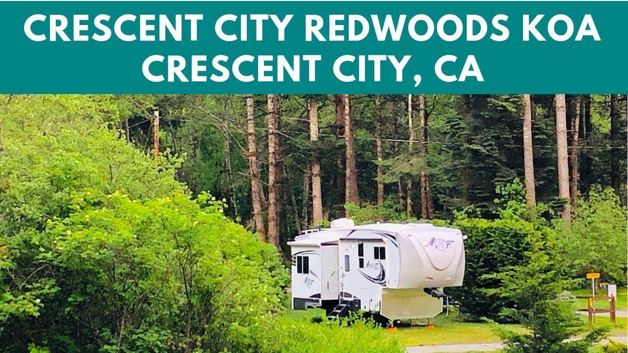 Crescent City Redwoods Koa Campground In 2020 Best Campgrounds Redwood Forest California Koa Campgrounds
