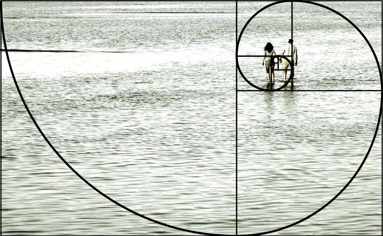 представили, как спираль фибоначчи и золотое сечение в фотографии специализация