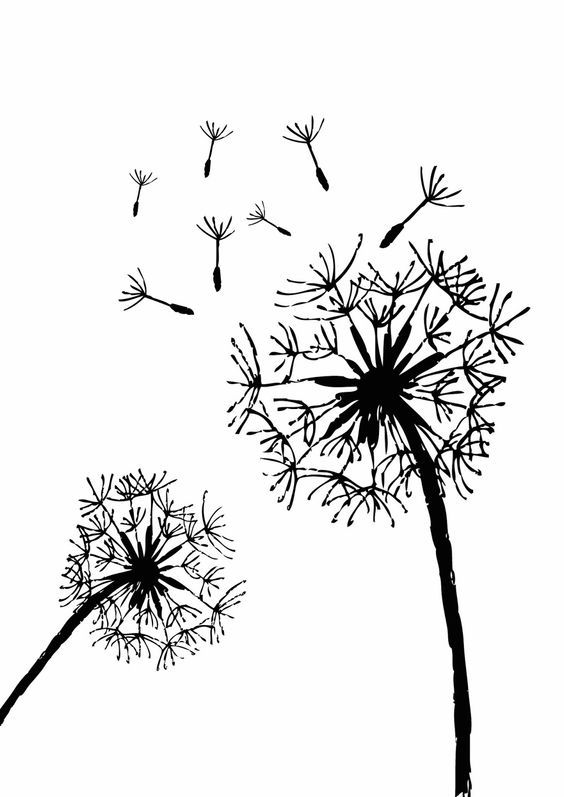 Free Printable Dandelion Stencils Dandelion plus lots of other