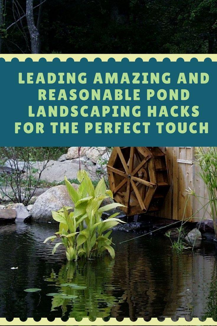 How Can I Install A Carefree Backyard Pond | Pond ...