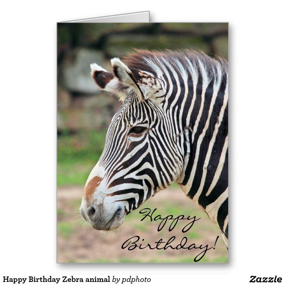 Happy Birthday Zebra Animal Card Zazzle Com With Images