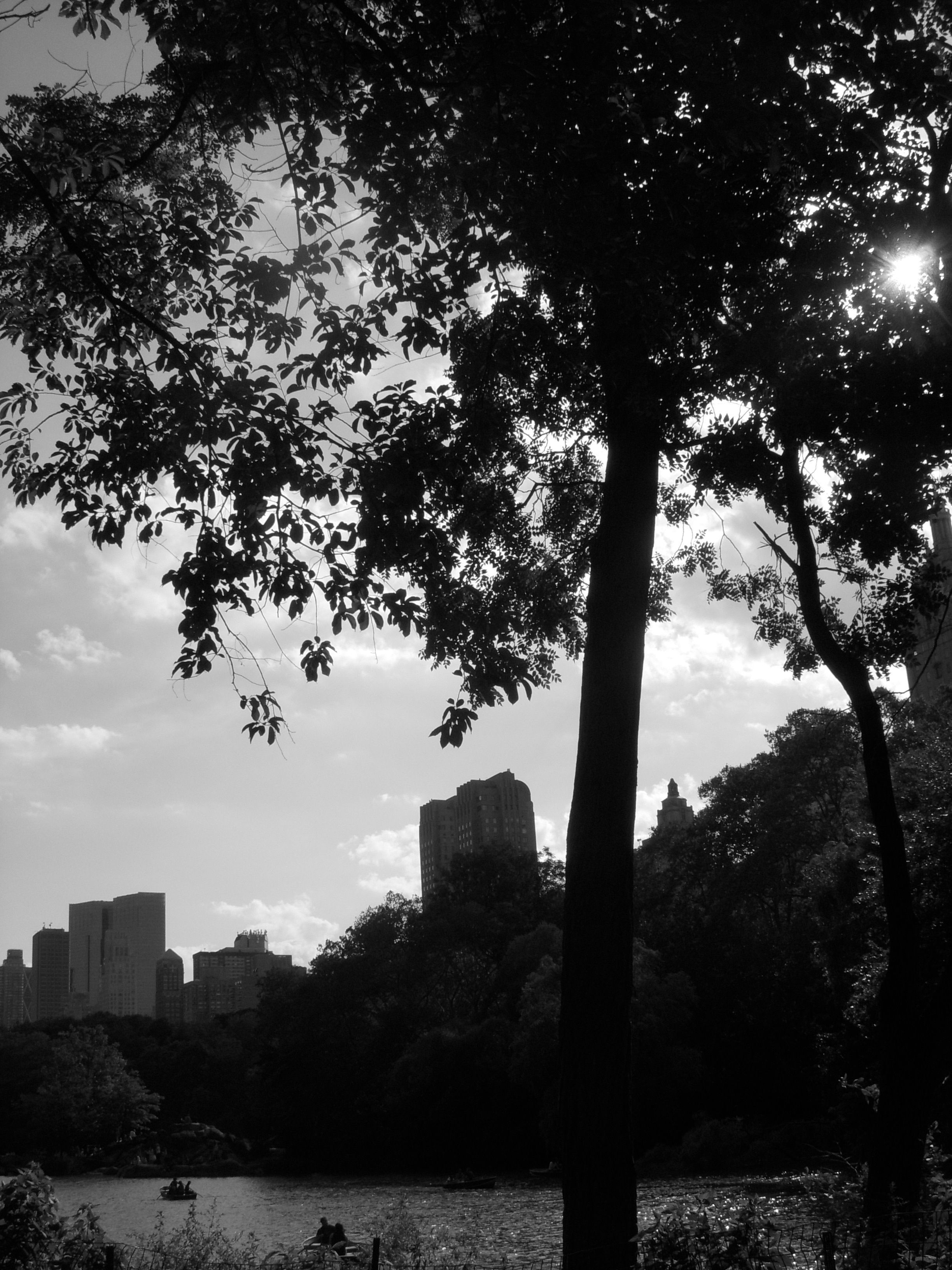 New York on a Summer Afternoon from Central Park