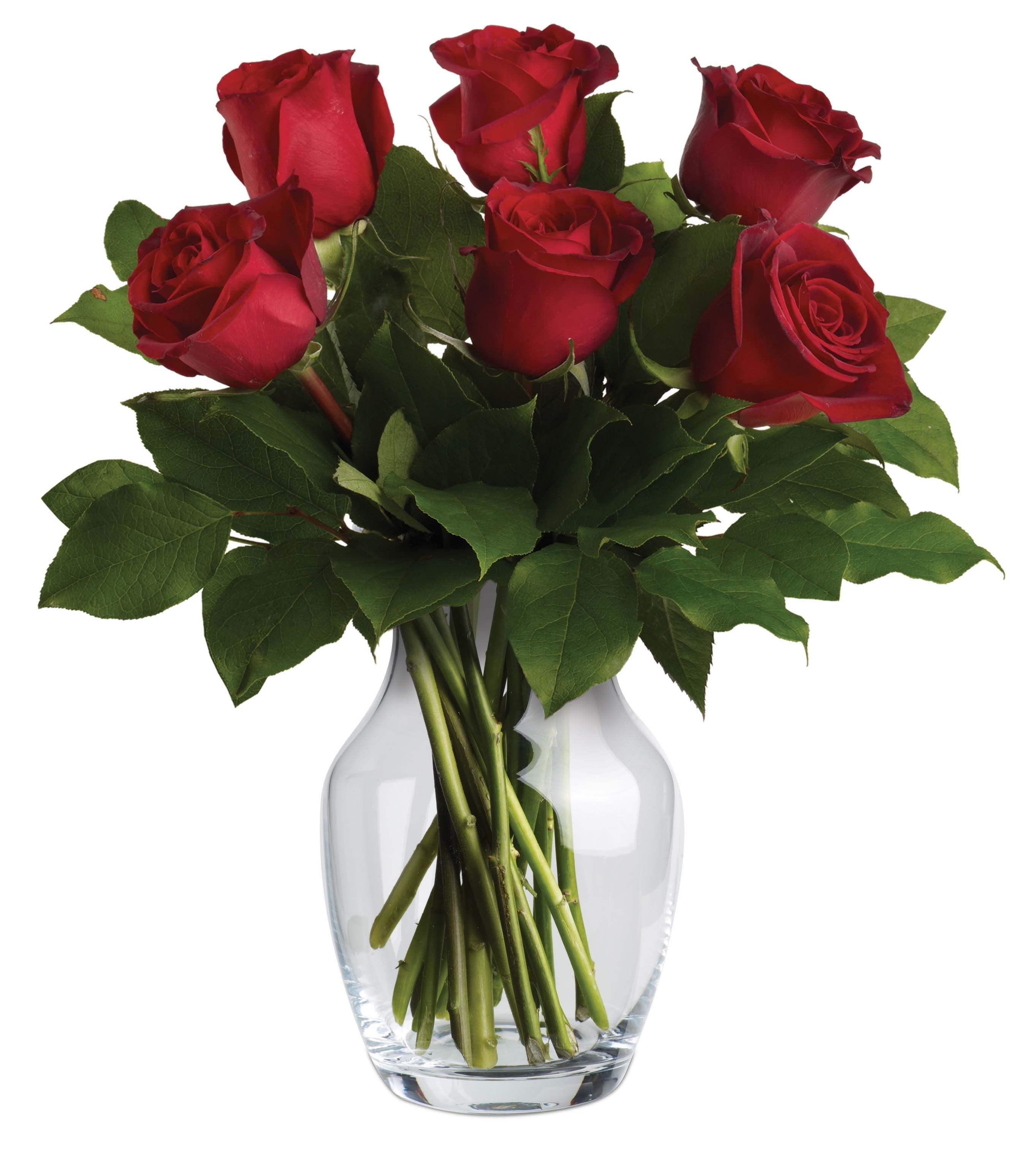 V11v endless love if the red roses exquisite beauty isnt reason if the red roses exquisite beauty isnt reason enough to make it the ideal choice to express your love its symbolism of magic and passion adds a message izmirmasajfo Images