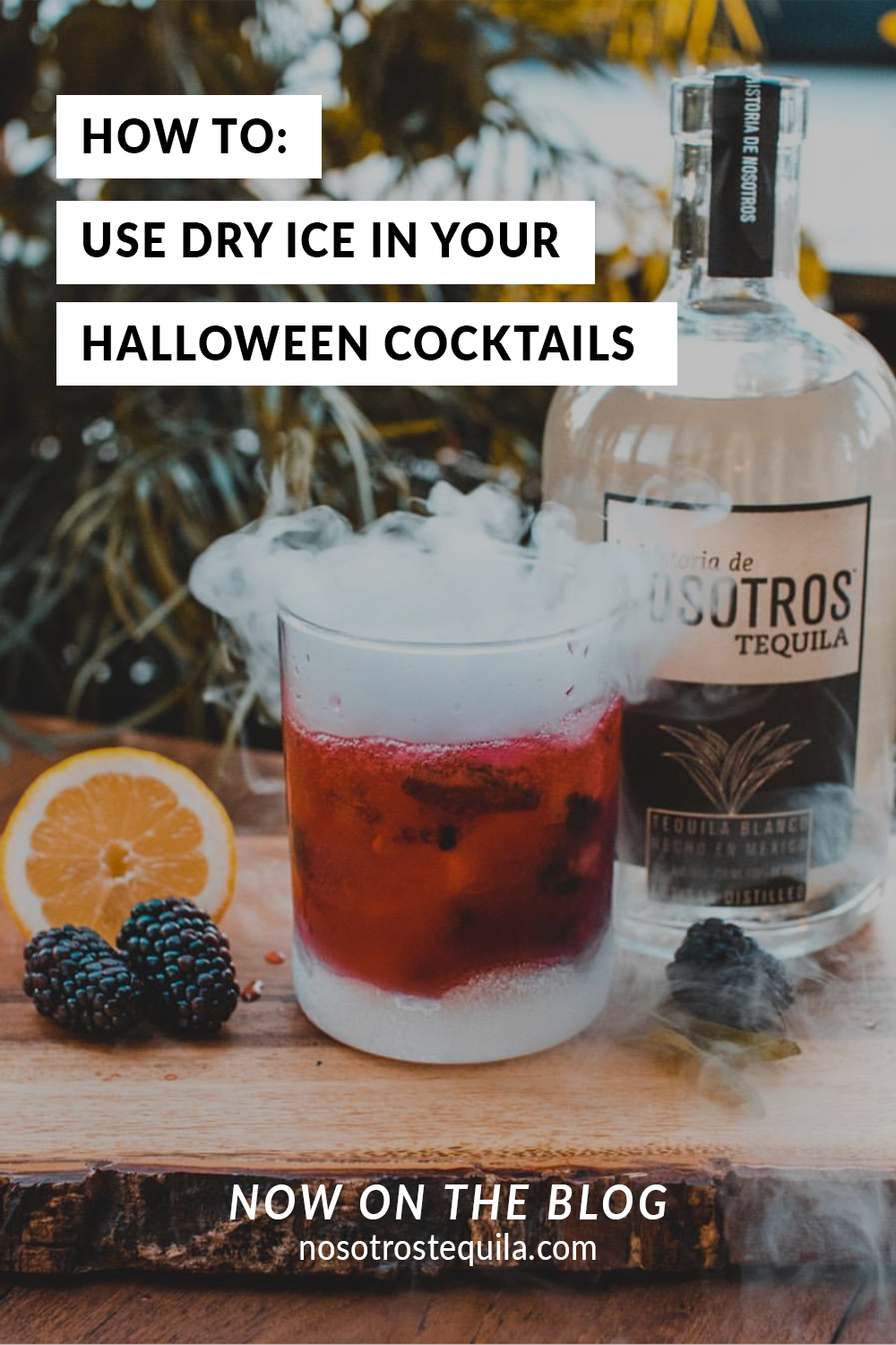 How To Use Dry Ice In Your Halloween Cocktails Nosotros Tequila Halloween Cocktails Dry Ice Cocktails Dry Ice
