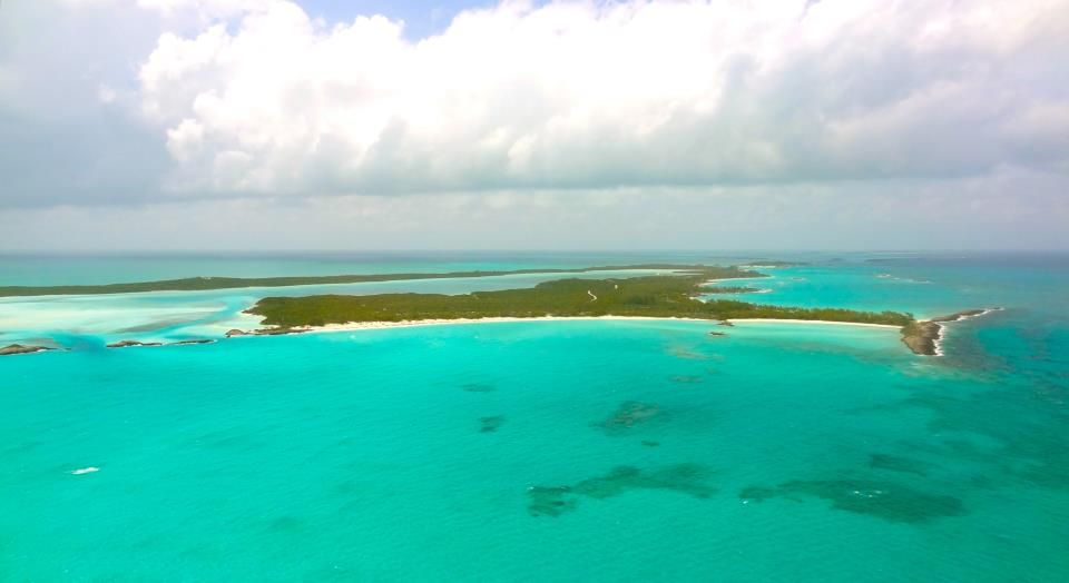 Tail of the whale on the infamous Normans Cay, The Exumas