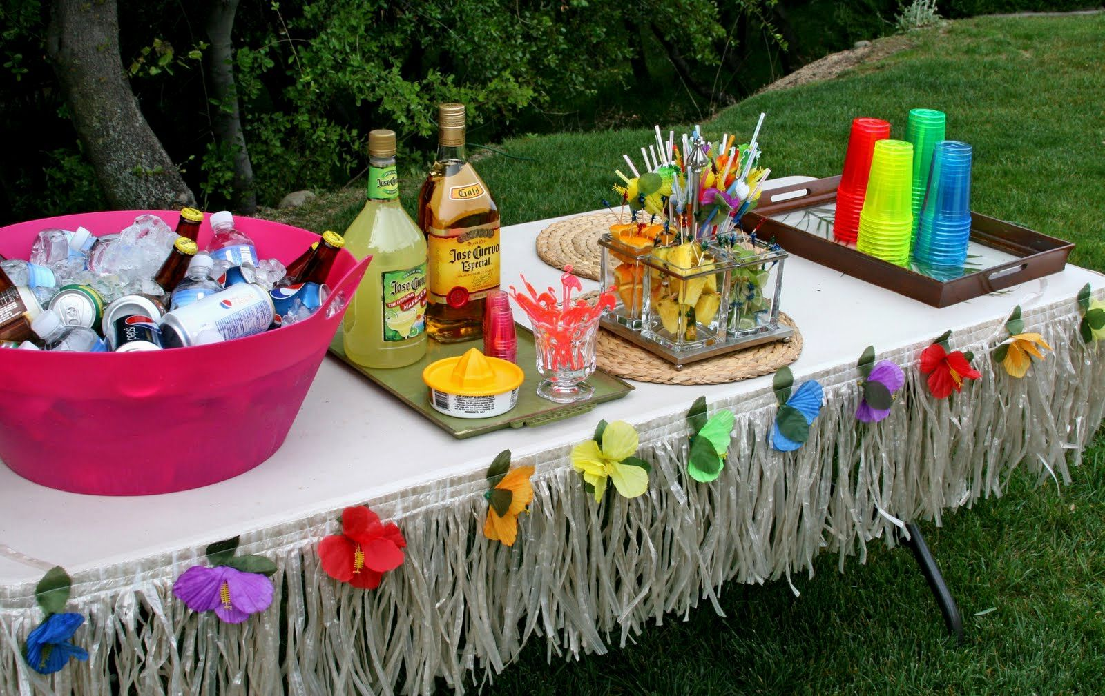 Caribbean Theme Party Ideas On Pinterest: Hawaiian-themed-party-ideas-island-themed-party-ideas.jpg