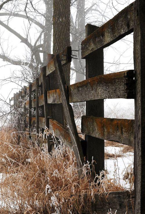 artpropelled: Fences (by gregodonnell)