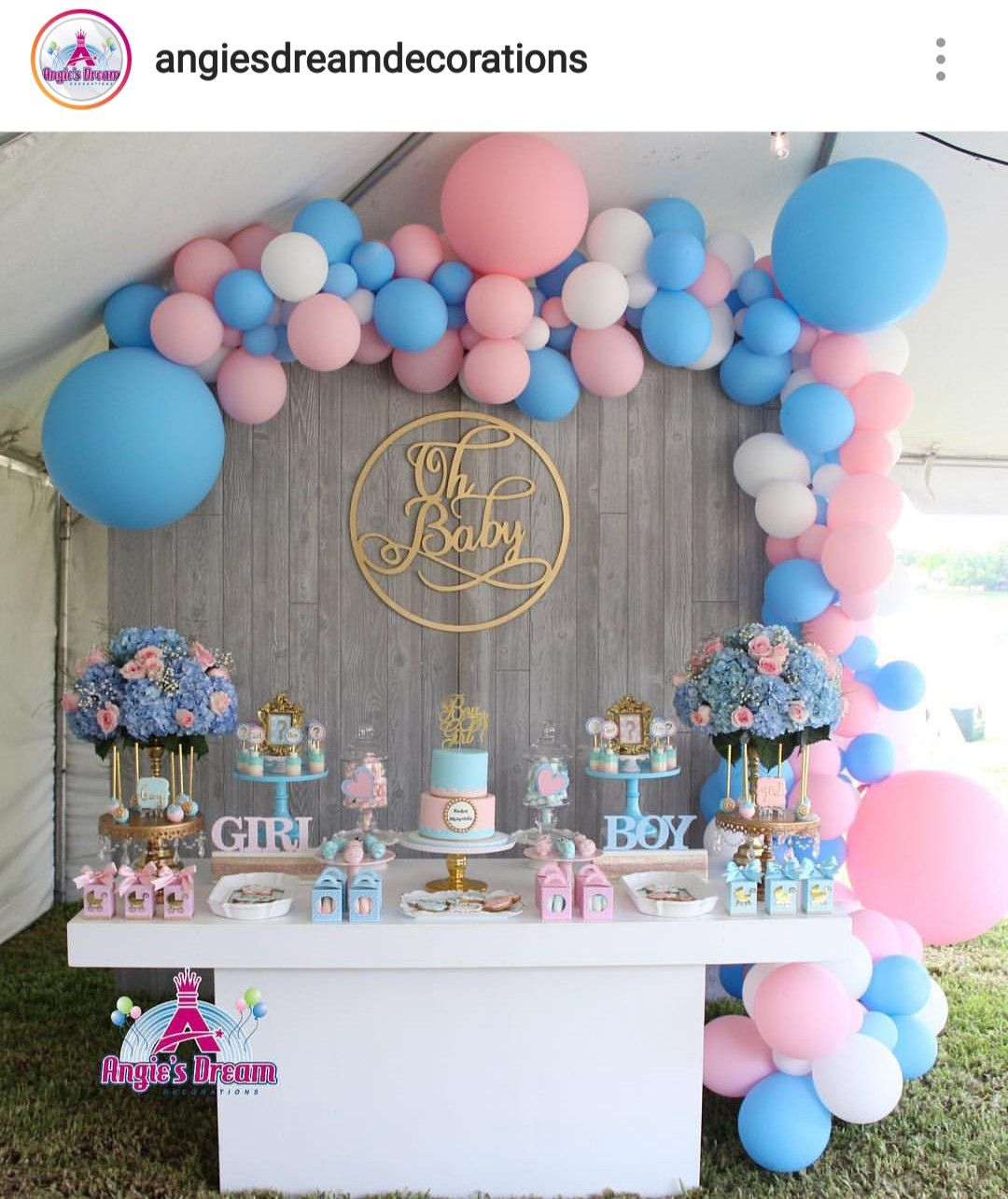 Gender Reveal Dessert Table And Decor Gender Reveal Party