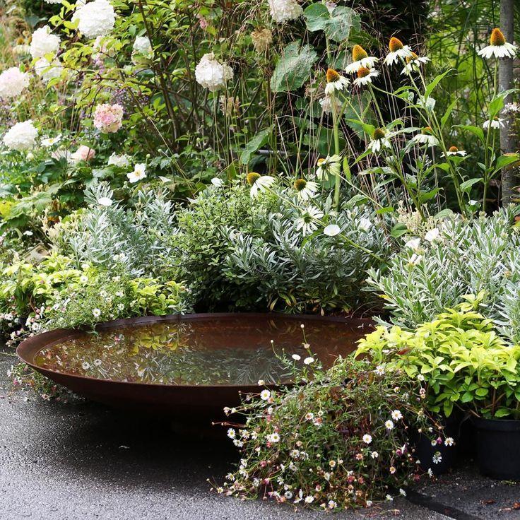 Garden Reflecting Pool In Small Steel Vessel Garten Brunnen Garten Garten Ideen