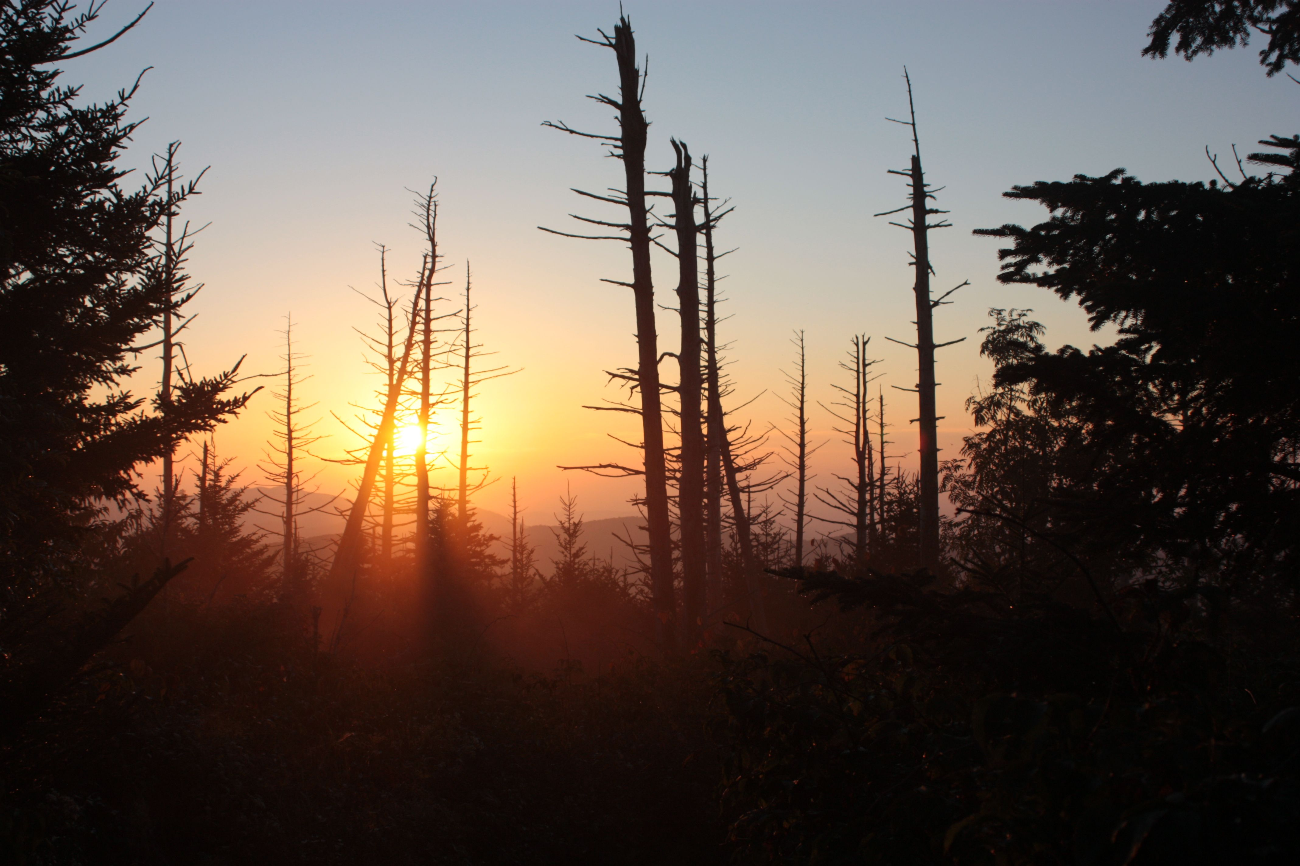 Sunset on the AT, Smoky Mt National Park September 2012 By Juston Cutcher