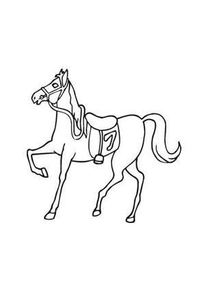 ausmalbild rennpferd nr. 7 zum ausmalen. ausmalbilder | ausmalbilderpferde | malvorlagen |