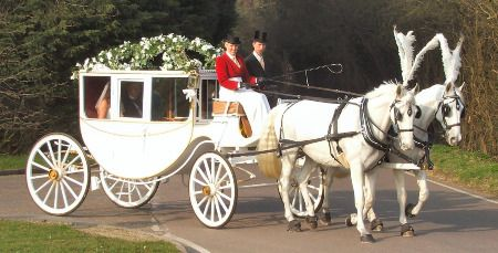 Gl Carriage And Horse The Coach This Wedding Has All