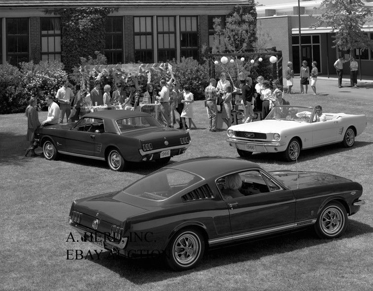 Ford Mustang Gt Fastback 291 New Car Model Introduction Press