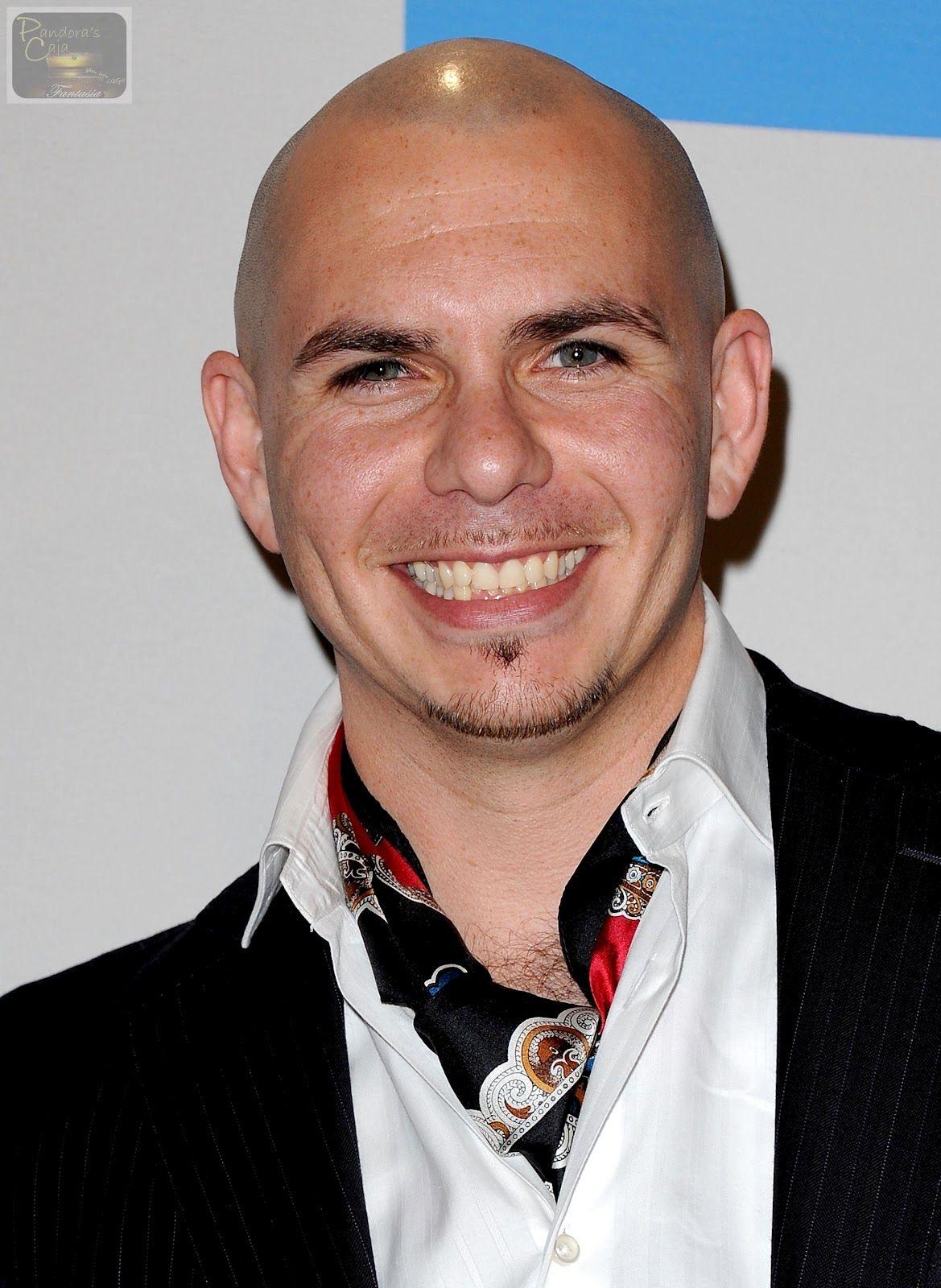 Photo Pitbull Singer 2014 HD Wallpaper IPhone 5 Pitbulls