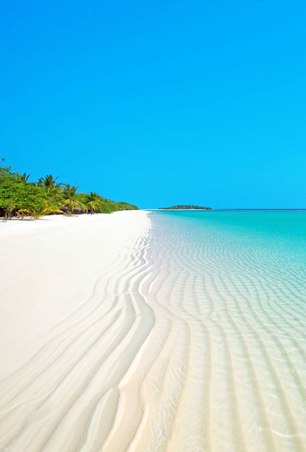 wunderschöne Strandlandschaft mit Palmen #photoscenery