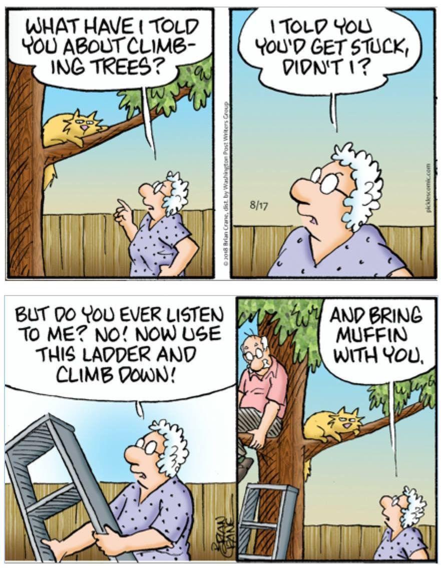 Pickels cartoon strip on line
