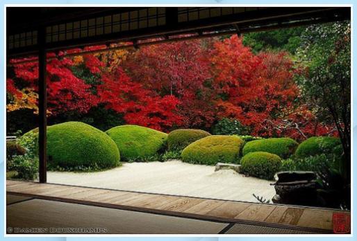 Photo of #autunno #Colori #Kyoto #peaking #Shisendo #temple – Giardino Fai D