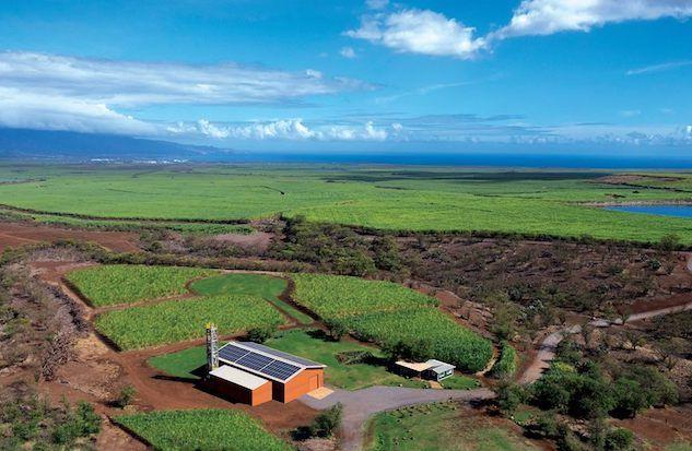 Ocean Organic Vodka is distilled at the solar-powered Hawaii Sea Spirits Organic Farm and Distillery in Kula