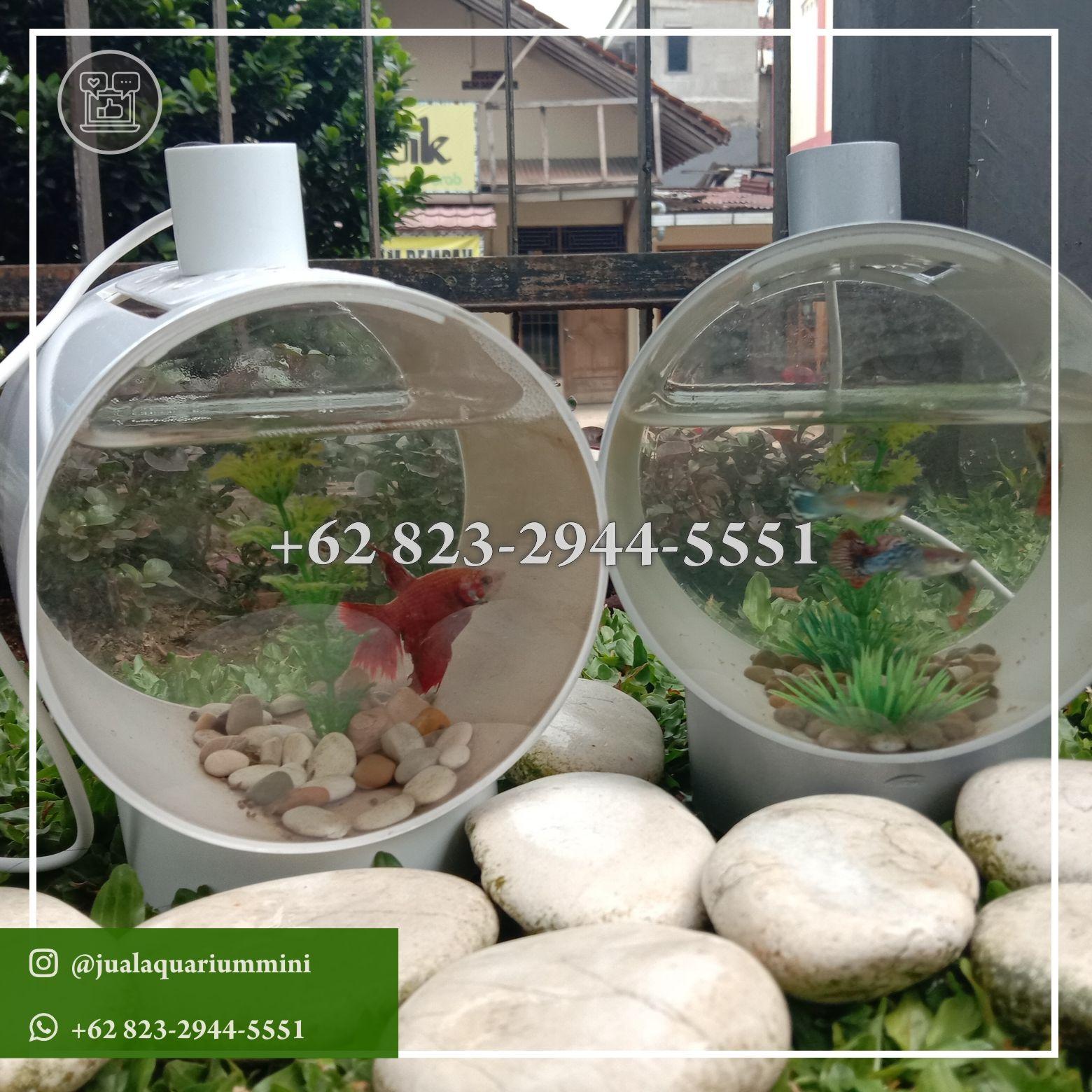 Wa 62 823 2944 5551 Jual Aquarium Mini Bandung Di 2020 Aquarium Hiasan Air Tawar