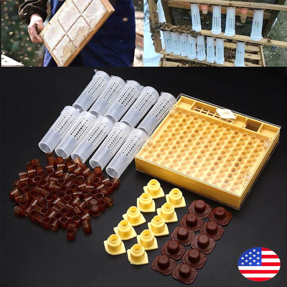 Beekeeping Nicot Style Queen Rearing System Starter Kit For Queens Bee Honey