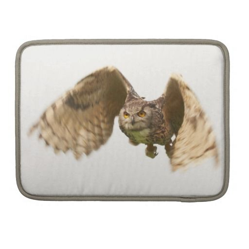 ">>>Cheap Price Guarantee          	Owl in Flight MacBook Pro 13"" Sleeve Sleeve For MacBook Pro           	Owl in Flight MacBook Pro 13"" Sleeve Sleeve For MacBook Pro you will get best price offer lowest prices or diccount couponeShopping          	Owl in Flight MacBook Pro 13"" S...Cleck Hot Deals >>> http://www.zazzle.com/owl_in_flight_macbook_pro_13_sleeve_macbook_sleeve-204455180172948036?rf=238627982471231924&zbar=1&tc=terrest"
