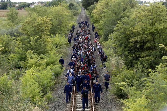 röszke migráns - Google keresés
