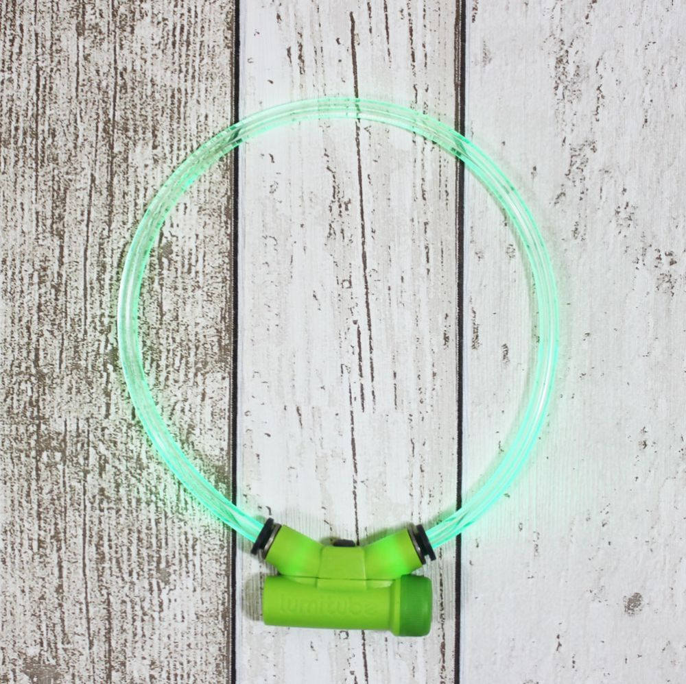 Dark nights, its always best to be seen. Like this lumitube collar from Fetch Pet Shop  @natural_dogfood