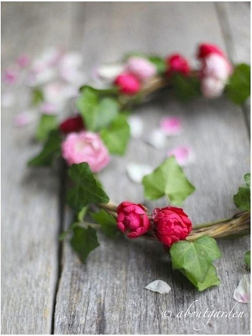 pictureperfectforyou: (via aboutgarden | event, garden, craft and pleasure)