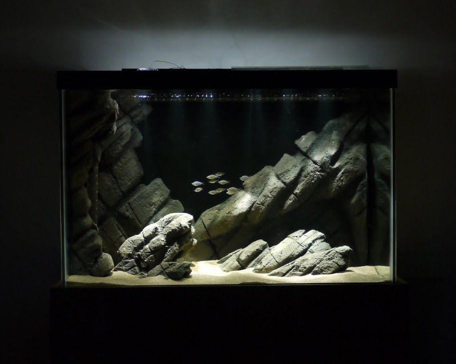 subdued light / rockscape -- i want this to be the premise of my next aquarium