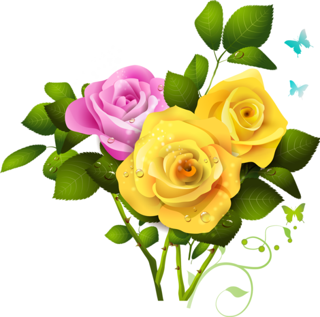 Yellow and Pink Rose Bouquet PNG Clipart   Pink rose png ...