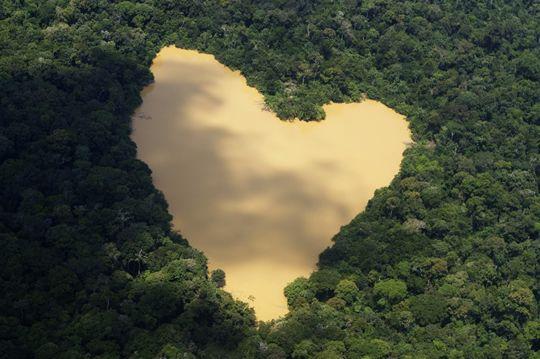 Heart Shaped Lake Amazon River Basin Brazil Nature States Of