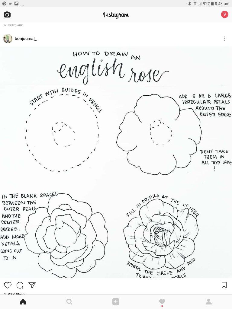 How to draw an English rose | GRAPHIC ART in 2019 | Drawings