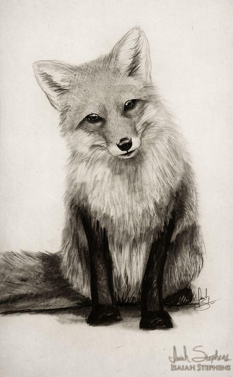 Fox say what by on deviantart everything pinterest dessin - Dessin renard ...