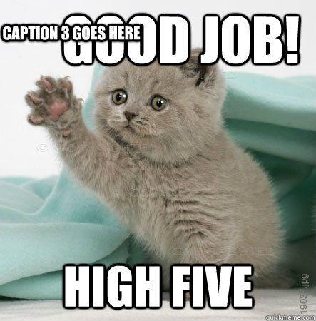 Good job! High five Caption 3 goes here - High Five Cat ...
