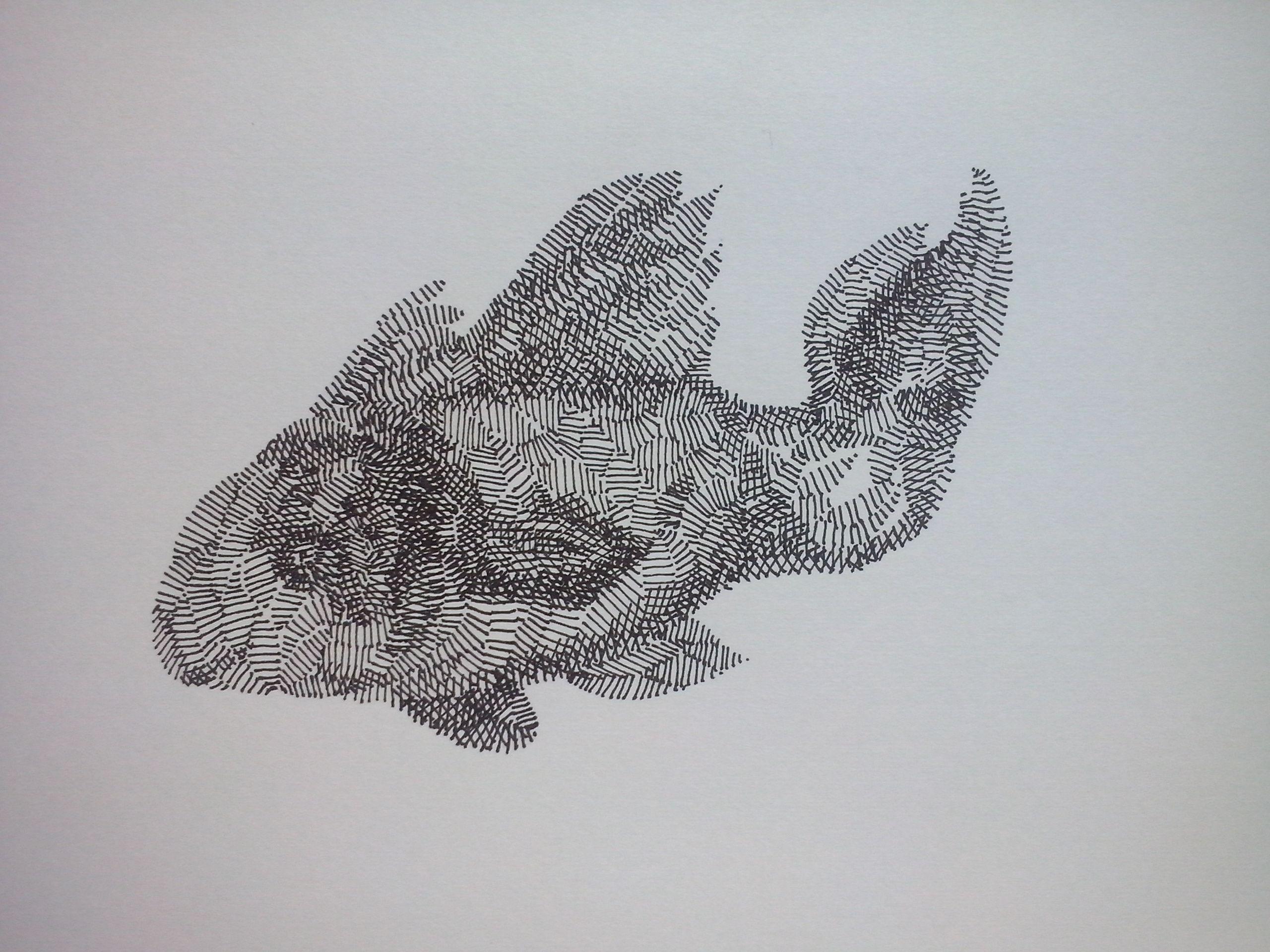 El pez el pez