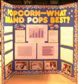 layout of science fair board