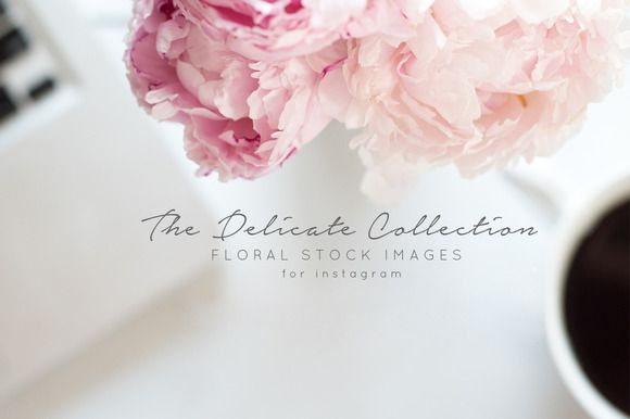 Styled Stock Photos Free Blog Header Floral Stock Images Blog