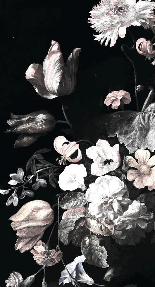 flowers cream backgrounds faxa nature wallpapers