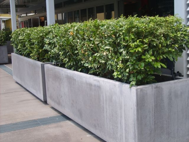 Gentil 13 Contemporary Concrete Planters | Contemporary Concrete Planters And  Sculpture By Adam Christopher