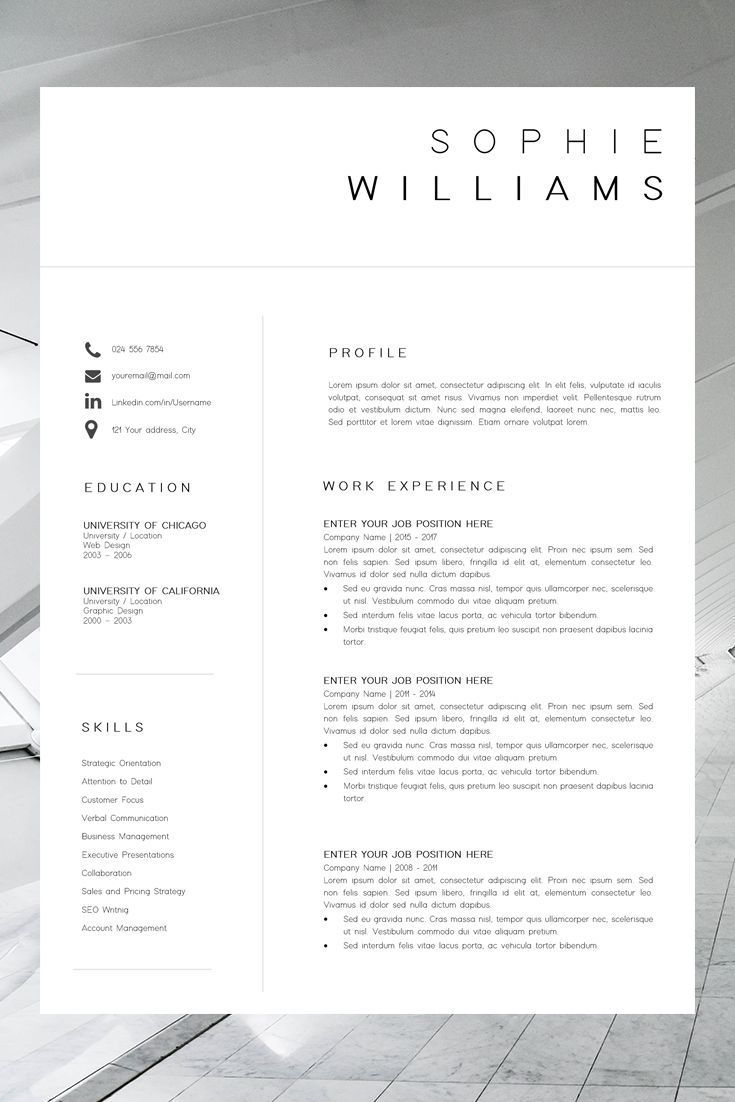 Business plan template discover new cv template resume