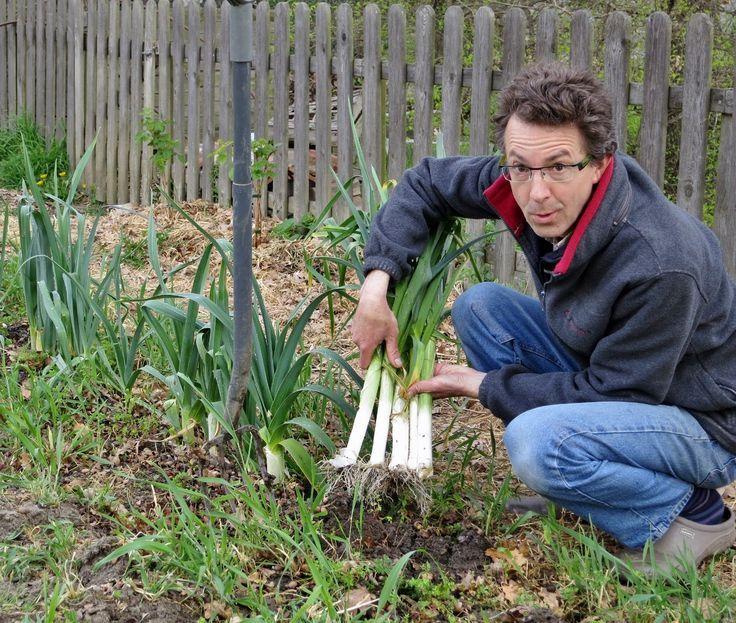 Comment planter les poireaux pour avoir plus de blanc