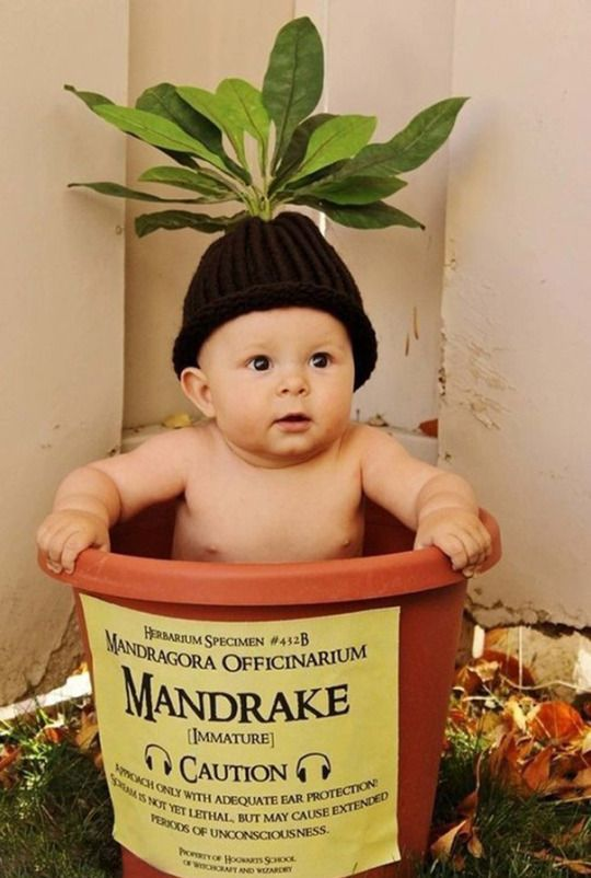 PICSVIPCOM things that make the world brighter Pinterest Baby - funny pregnant halloween costume ideas